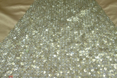 allover-sequins-Bugle-beads-embroidery